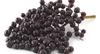Elderberry-1050x574